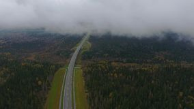 Fog above the road and bridge. Autumn. View on the road to the bridge. Autumn stock footage