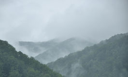 Fog above the woody mountains Royalty Free Stock Images