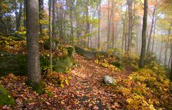 Fog in Allegheny mountains Royalty Free Stock Photo