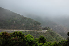Fog in the Anaga Mountains in Tenerife Canary Islands, Spain, Europe. Mystic fog in the forests of the Anaga Mountains in Tenerife which belongs to the Canary royalty free stock photos