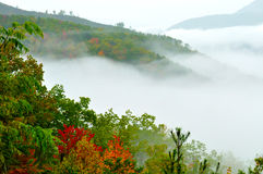 Fog And Fall Colors Cover The Top Of A Mountain. Stock Photography