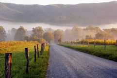 Fog And Sun Rises On A Country Lane. Royalty Free Stock Image