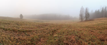 Fog on an autumn field Stock Images