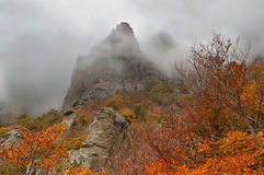 Fog autumn mountains Stock Photography