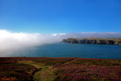 Fog bank Royalty Free Stock Images