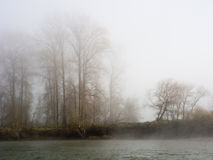 Fog on the banks of Snoqualmie river Royalty Free Stock Photography