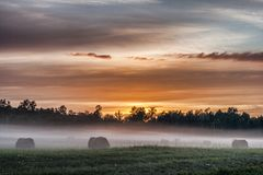 Fog Belt on the meadow. Fog crawling over the meadow during sunset Stock Images