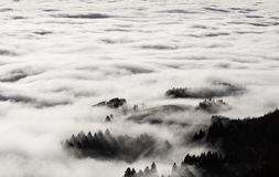 Fog in black forest, Germany Royalty Free Stock Image