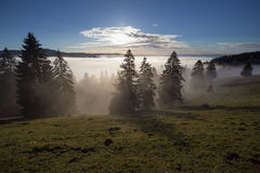 Fog in black forest valley, southwest Germany. Inversion fog in black forest valley, southwest Germany Stock Images