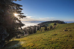 Fog in black forest valley, southwest Germany Stock Photos