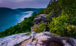 Fog in the Blackwater Canyon at sunset, seen from Lindy Point, B Stock Images