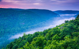Fog in the Blackwater Canyon at sunset, seen from Lindy Point, B royalty free stock image