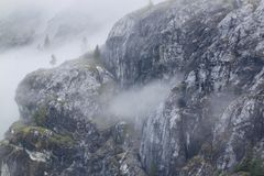 Fog on the Bluffs. Fog engulfs the rocky shoreline of Galcier Bay. Bluffs and rocky crags with trees Stock Images