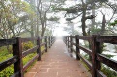Fog and bridge Stock Photo