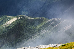 Fog in Calimani Mountains Stock Image