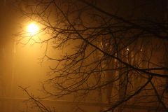 Fog in the city. The city at night in the fog, a lantern in the fog Royalty Free Stock Photos