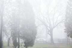 Fog on city streets. royalty free stock photography
