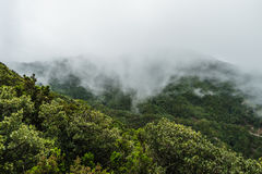 Fog and cloud formation along the TF-134 in Tenerife Stock Photos