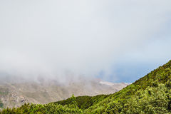 Fog and cloud formation along the TF-134 in Tenerife Royalty Free Stock Images