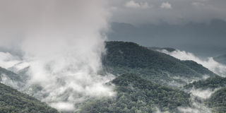 Fog and cloud mountain valley landscape Stock Image
