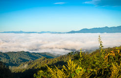 Fog and cloud mountain Royalty Free Stock Photography