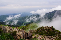 Fog and clouds above the woods in the mountains Stock Image