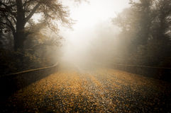 Fog on the cobblestones, Sacro Monte of Varese Stock Image