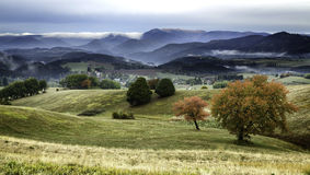 fog and colored trees - autumn in Slovakia Royalty Free Stock Photos