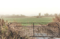 Fog in the Counry Royalty Free Stock Images
