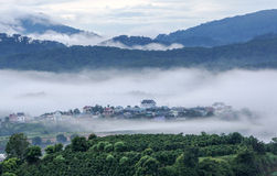 Fog in country, Da Lat city Stock Images