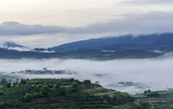 Fog in country, Da Lat city Royalty Free Stock Images