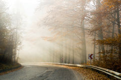 Fog on the country road Stock Photo