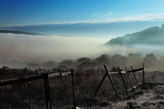 Fog in countryside Stock Photography