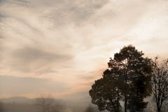 Fog covering the landscape at sunset Stock Photography