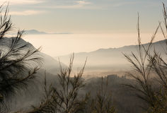 Fog covering the mountain. Forests stock photos