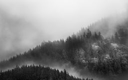 Fog covering the mountain forests with low cloud in Juneau alaska for fog landscape Stock Photo