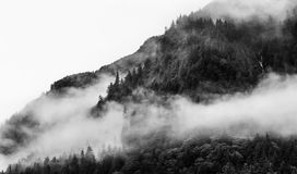 Fog covering the mountain forests with low cloud in Juneau alaska for fog landscape Royalty Free Stock Photos