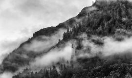Fog covering the mountain forests with low cloud in Juneau alaska for fog landscape. Misty foggy smoky mountain top with pine tree Fog covering the mountain Royalty Free Stock Image