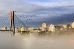 Fog covers snow-capped mountain Stock Photography