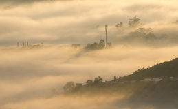 Fog in the Da Lat city Stock Image
