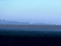 Fog. Dawn. Royalty Free Stock Photography