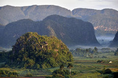 Fog at dawn in the Valley of Vinales Stock Photo
