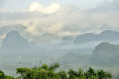 Fog at dawn in the Valley of Vinales Stock Image