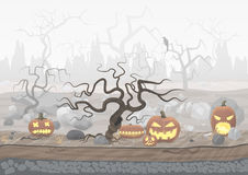 Fog day scary horror halloween background with pumpkin and trees. Stock Image