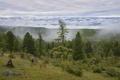 Fog down from the mountains Royalty Free Stock Photography