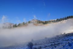 Fog dragon - low clouds under blue sky. Low clouds move under blue sky in sunny day. Winter in Zaili Alatau mountains with pine trees forest in Kazakhstan Royalty Free Stock Photo