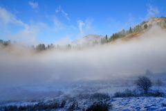 Fog dragon - low clouds under blue sky. Low clouds move under blue sky in sunny day. Winter in Zaili Alatau mountains with pine trees forest in Kazakhstan Stock Photo