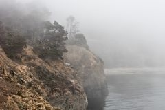 Foggy Coastline of Northern California in Sonoma. Fog drifts through a forest on the wild, rocky coast of northern California. This beautiful region of the west royalty free stock photos
