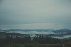 Fog. Early morning in the nature Royalty Free Stock Photography