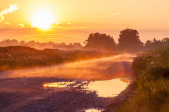 Fog on the early morning. At the road in Estonia Royalty Free Stock Photo